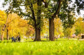 Riapertura parchi e giardini pubblici